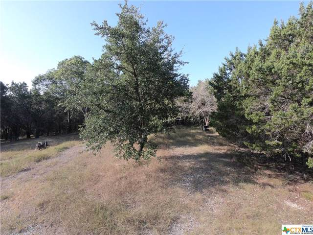 5249 Comanche Drive, Temple, TX 76502 (MLS #397131) :: The Zaplac Group
