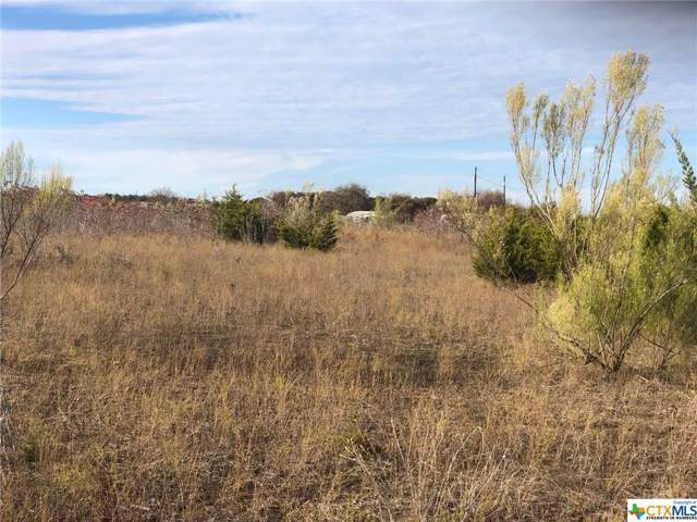 Lot 49 Avila Lane, Briggs, TX 78608 (MLS #397152) :: Vista Real Estate