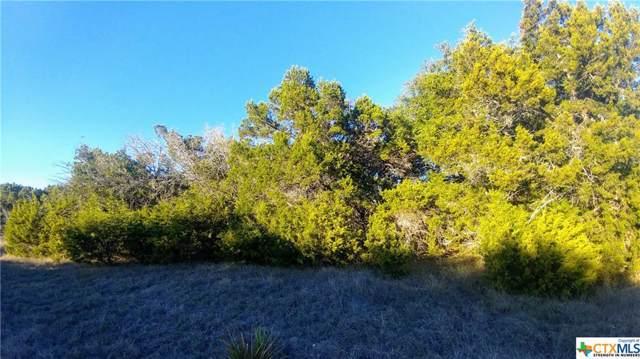 430 Cielo Vista Vista, Canyon Lake, TX 78133 (MLS #397207) :: Berkshire Hathaway HomeServices Don Johnson, REALTORS®