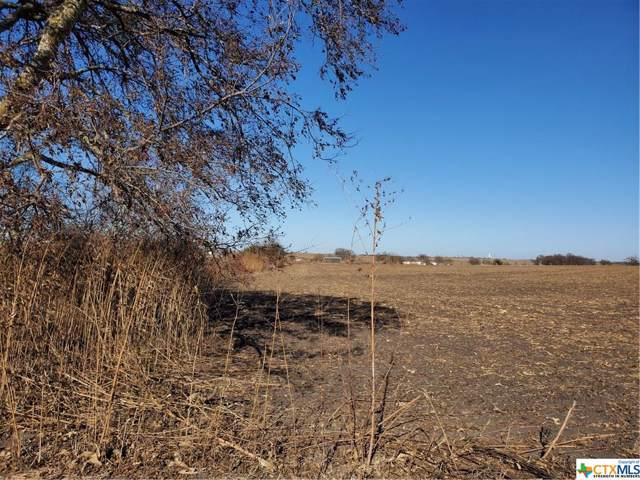 13991 Krause Road, Holland, TX 76534 (MLS #397314) :: The Real Estate Home Team