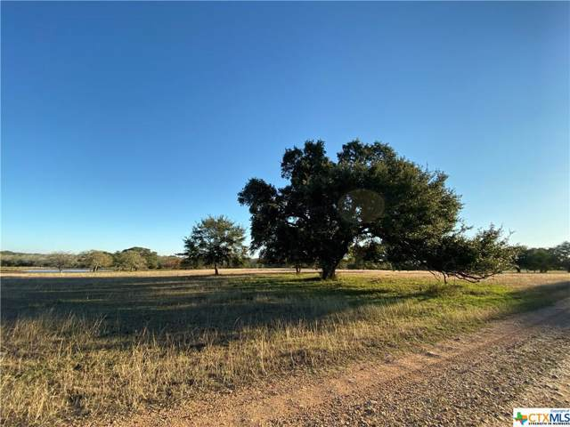 TBD Ranch Road, Yoakum, TX 77995 (MLS #397315) :: The Graham Team