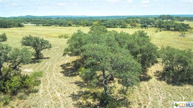 3335 N U. S. Highway 281, Blanco, TX 78606 (MLS #397402) :: Berkshire Hathaway HomeServices Don Johnson, REALTORS®