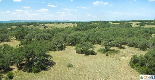 3145 N U. S. Highway 281, Blanco, TX 78606 (MLS #397408) :: Berkshire Hathaway HomeServices Don Johnson, REALTORS®