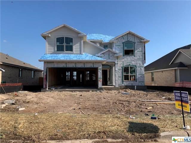 5517 Perdita Drive, Belton, TX 76513 (MLS #397462) :: Isbell Realtors