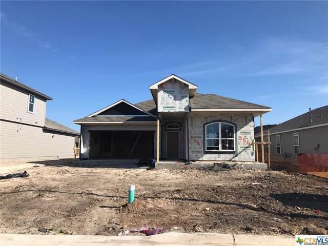 356 Walnut Creek, New Braunfels, TX 78130 (MLS #397593) :: Isbell Realtors