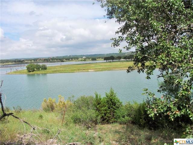 2022 San Jose Way, Canyon Lake, TX 78133 (MLS #397611) :: Erin Caraway Group