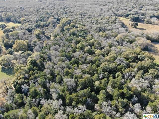 TBD (2) Krischke Road, Schulenburg, TX 78956 (MLS #397669) :: RE/MAX Land & Homes