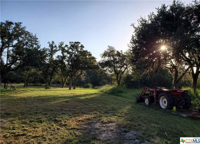 2797 Baecker Road, Goliad, TX 77963 (MLS #397692) :: The Zaplac Group