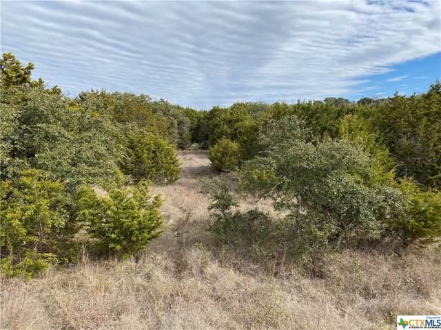 107 Dodder Lane #14, Spring Branch, TX 78070 (MLS #397876) :: Kopecky Group at RE/MAX Land & Homes
