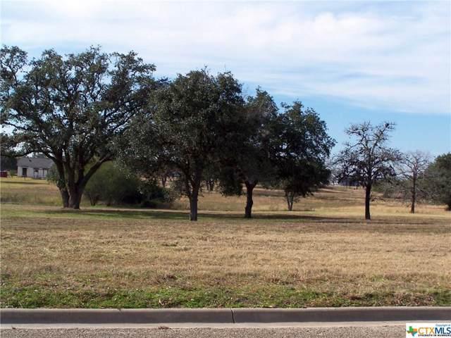 402 C L Duckett Drive, Cuero, TX 77954 (MLS #398079) :: The Zaplac Group