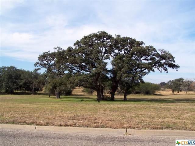302 C L Duckett Drive, Cuero, TX 77954 (MLS #398083) :: The Zaplac Group