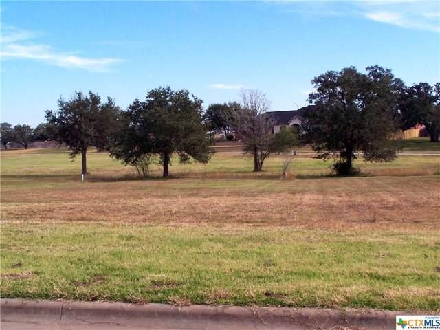 106 Laurel Oak Circle, Cuero, TX 77954 (MLS #398105) :: Kopecky Group at RE/MAX Land & Homes