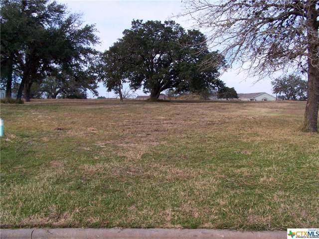 109 Laurel Oak Circle, Cuero, TX 77954 (MLS #398110) :: Kopecky Group at RE/MAX Land & Homes