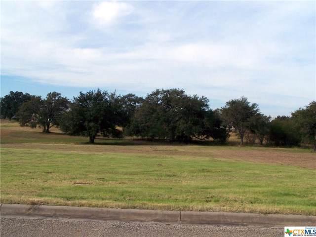 208 C L Duckett Drive, Cuero, TX 77954 (MLS #398119) :: The Zaplac Group