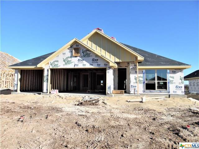2607 Emerald Dove, Temple, TX 76502 (MLS #398256) :: Vista Real Estate