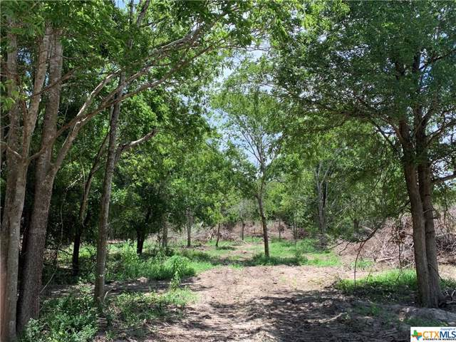 Lot 4 Trinity, Edna, TX 77957 (MLS #398461) :: The Zaplac Group