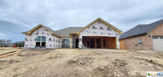 2606 Emerald Dove Drive, Temple, TX 76502 (MLS #398497) :: Vista Real Estate