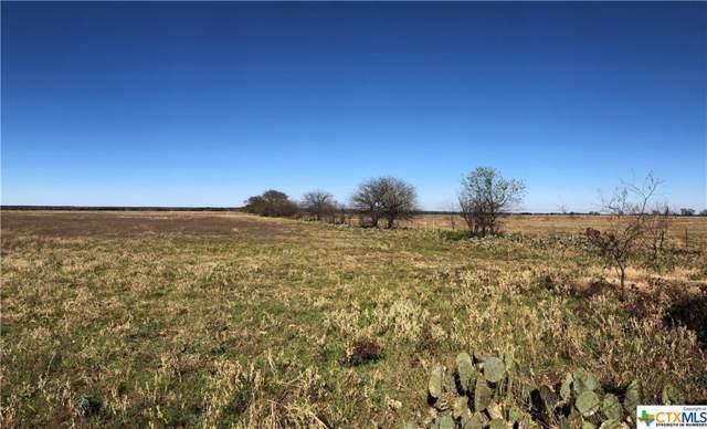 10101 Williamson, Salado, TX 76571 (MLS #398649) :: The Real Estate Home Team