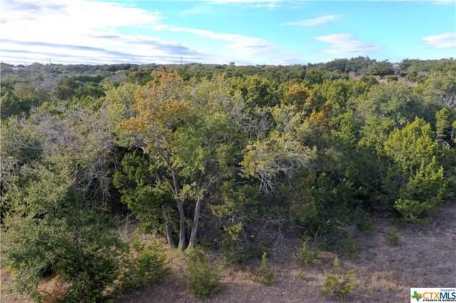 Canyon Lake, TX 78133 :: Kopecky Group at RE/MAX Land & Homes