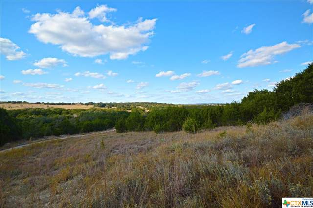 10252 Cr 3420, Lampasas, TX 76550 (MLS #398876) :: Marilyn Joyce | All City Real Estate Ltd.