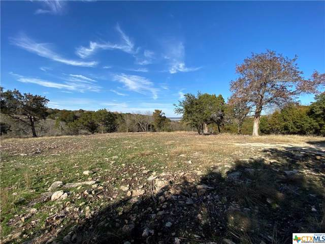 9860 Hodge Canyon Drive, Salado, TX 76571 (#398917) :: First Texas Brokerage Company