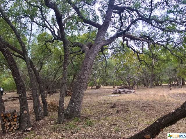 TBD Cielo Springs Drive, Blanco, TX 78606 (MLS #398981) :: Brautigan Realty