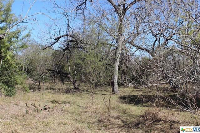 215 Lott Road, Victoria, TX 77905 (MLS #399004) :: Marilyn Joyce | All City Real Estate Ltd.