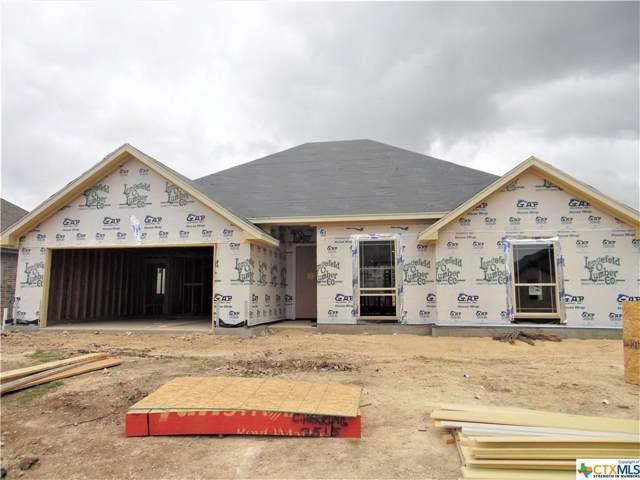 2515 Emerald Dove, Temple, TX 76502 (MLS #399232) :: Vista Real Estate