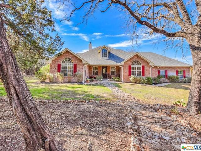 7430 N Lakeview Drive, Salado, TX 76571 (#399274) :: Realty Executives - Town & Country