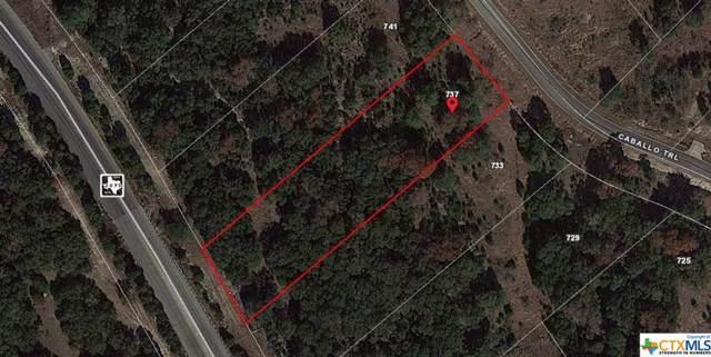 737 Caballo Trail, Canyon Lake, TX 78133 (MLS #399440) :: Kopecky Group at RE/MAX Land & Homes