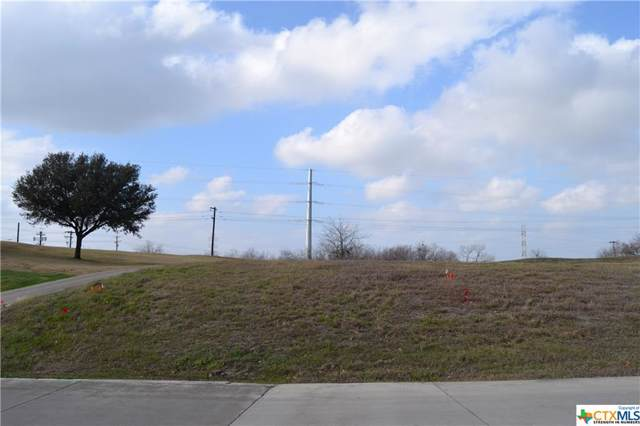 172 & 178 Long Creek Boulevard, New Braunfels, TX 78130 (MLS #399524) :: The Real Estate Home Team
