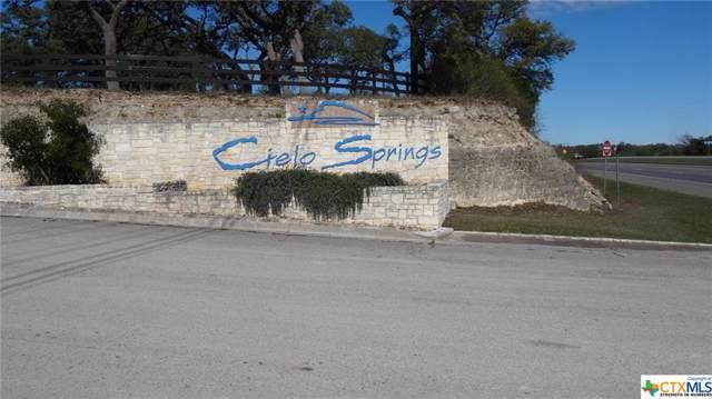 0 N El Campo, Blanco, TX 78606 (MLS #399677) :: Berkshire Hathaway HomeServices Don Johnson, REALTORS®