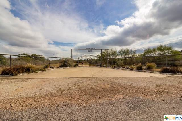 1313 Baecker Road, Goliad, TX 77963 (MLS #399804) :: Kopecky Group at RE/MAX Land & Homes