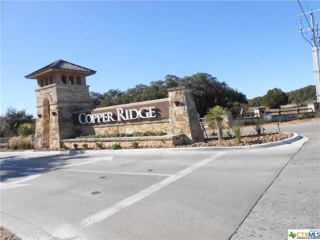 5669 Comal Vista, New Braunfels, TX 78132 (MLS #399899) :: Kopecky Group at RE/MAX Land & Homes