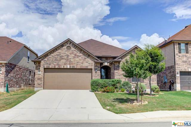 669 Knoll Brook, New Braunfels, TX 78130 (#399925) :: Realty Executives - Town & Country