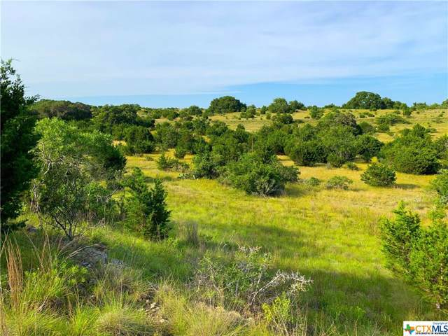 4 Cr 208 (Odiorne Road), Johnson City, TX 78636 (MLS #400052) :: The Zaplac Group