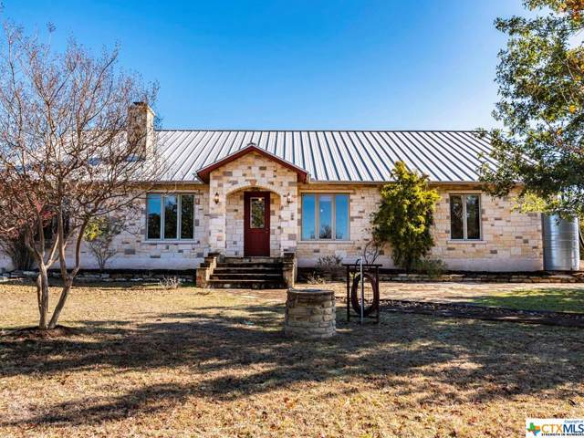 650 Old Red Ranch Road, Dripping Springs, TX 78620 (MLS #400074) :: The i35 Group
