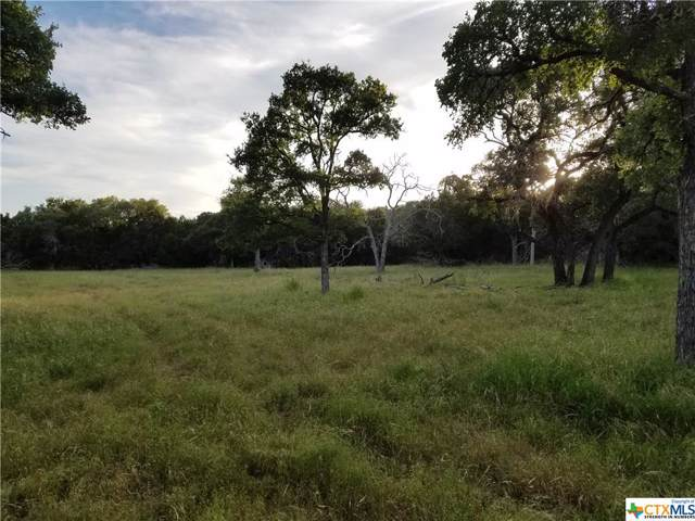 7744 Owl Creek Park Road, Gatesville, TX 76528 (#400108) :: First Texas Brokerage Company
