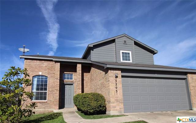 3205 Fry Court, Killeen, TX 76543 (#400125) :: Realty Executives - Town & Country