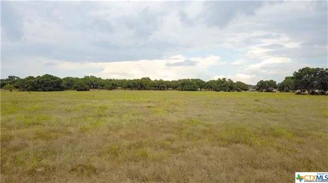 6700 Creek Road, Dripping Springs, TX 78620 (MLS #400235) :: The i35 Group