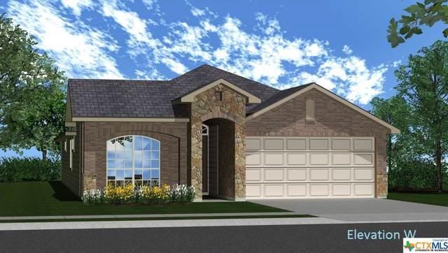 925 Ibis Falls Loop, Jarrell, TX 76537 (MLS #400579) :: Kopecky Group at RE/MAX Land & Homes