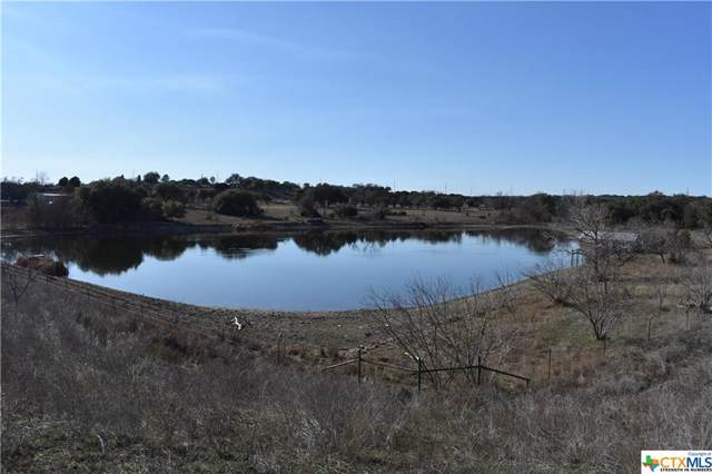 46.3 Acres County Road 1045, Lampasas, TX 76522 (MLS #400685) :: The Real Estate Home Team