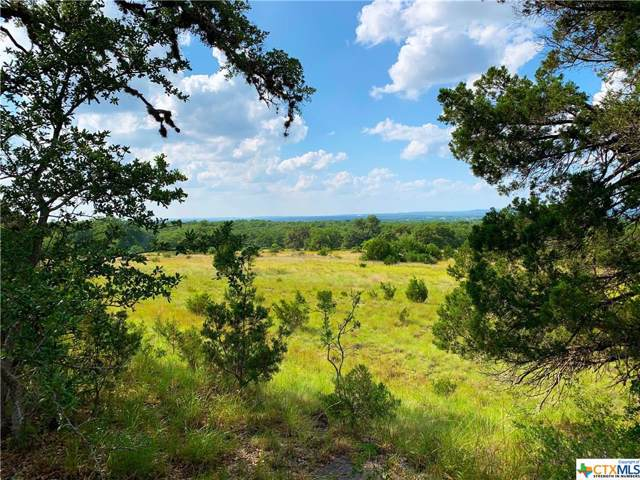 8 Cr 208 (Odiorne Rd), Johnson City, TX 78636 (MLS #400724) :: The Zaplac Group