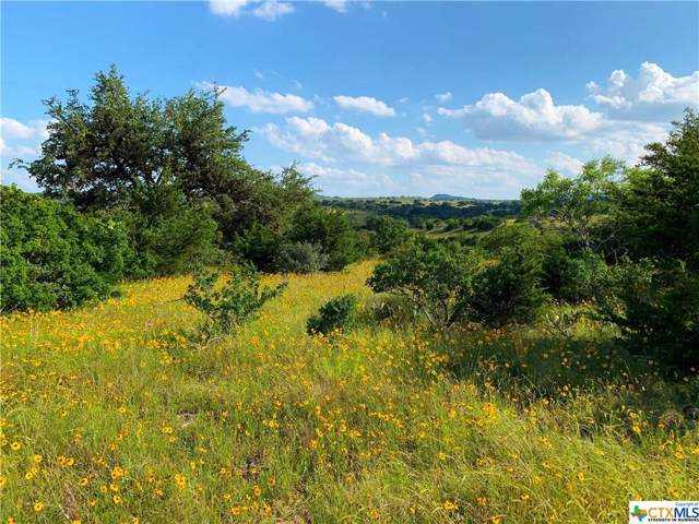 3 Cr 208 (Odiorne Rd), Johnson City, TX 78636 (MLS #400818) :: The Zaplac Group