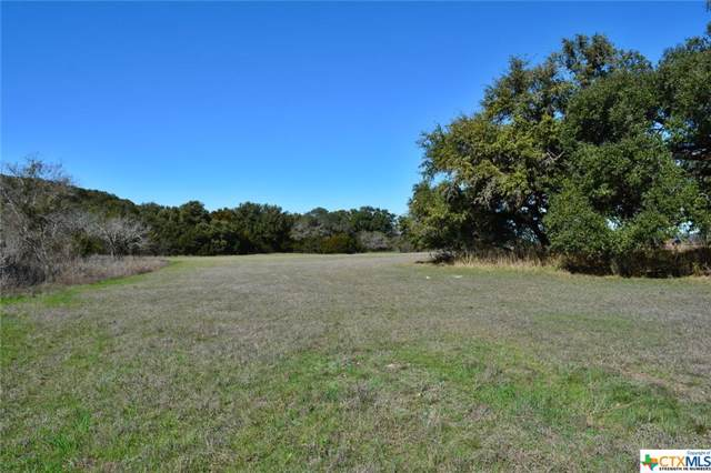 920 Fm 2673, Canyon Lake, TX 78133 (MLS #400893) :: The Zaplac Group