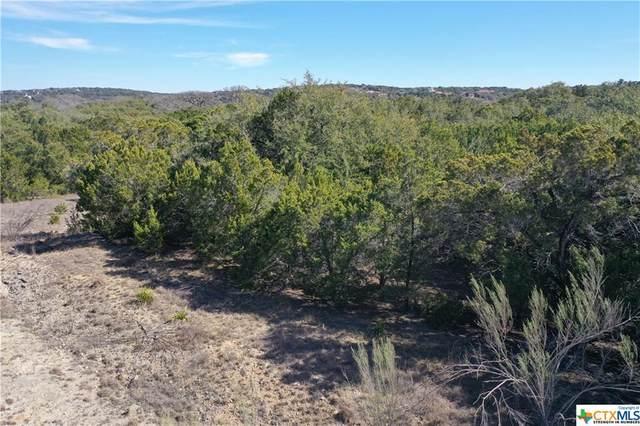 513 Cielo Vista, Canyon Lake, TX 78133 (MLS #400994) :: The Barrientos Group