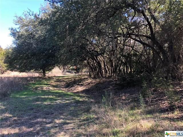LOT 237 & 238 (2.7ac Arroyo Way, Canyon Lake, TX 78133 (MLS #400995) :: The Barrientos Group