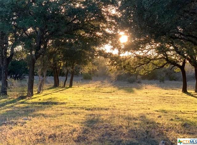TBD 21730 Firefly Road, Florence, TX 76527 (MLS #401370) :: Kopecky Group at RE/MAX Land & Homes