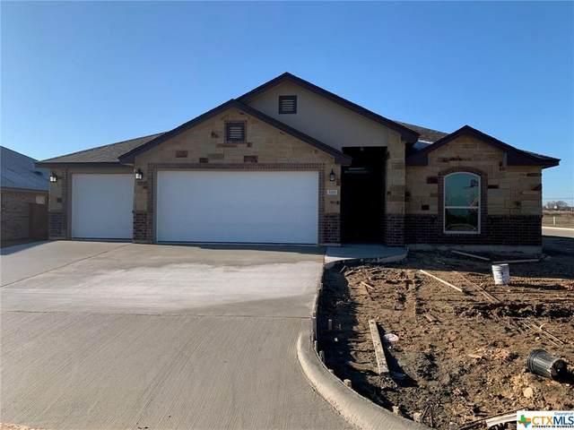3325 Victoria Meadow Drive, Belton, TX 76513 (MLS #401482) :: The Myles Group