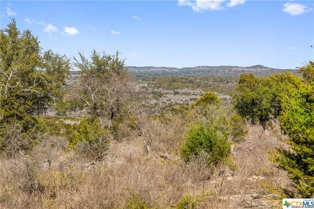 TBD Gipson Road, Johnson City, TX 78636 (MLS #401536) :: Carter Fine Homes - Keller Williams Heritage
